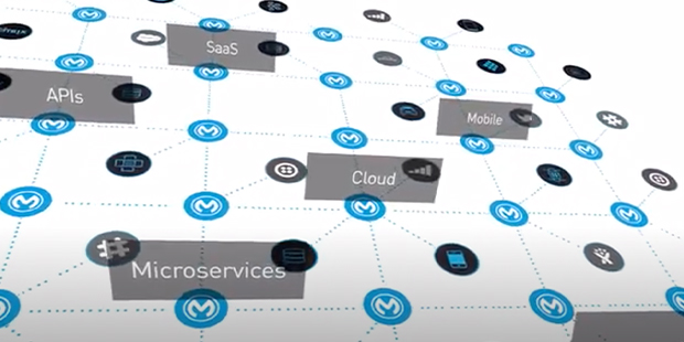 What MuleSoft does