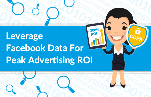 Leverage Facebook Data for Peak Advertising ROI