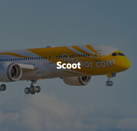 Introv Oracle Netsuite scoot